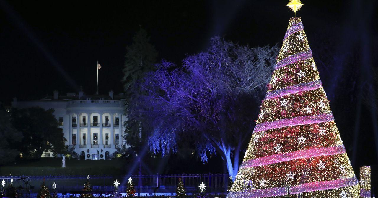 今年美國民眾很難買到耶誕樹。(圖/美聯社)
