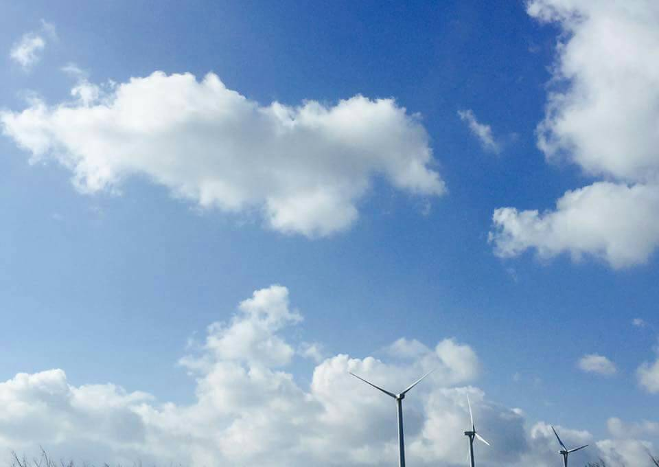 抗議空汙遊行前夕,台中市環保局表示,台中 11月PM2.5月均值創6年新低,今年...