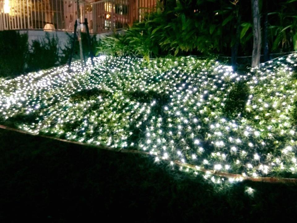 台中柳川耶誕燈海太美 民眾拍照踩壞燈網