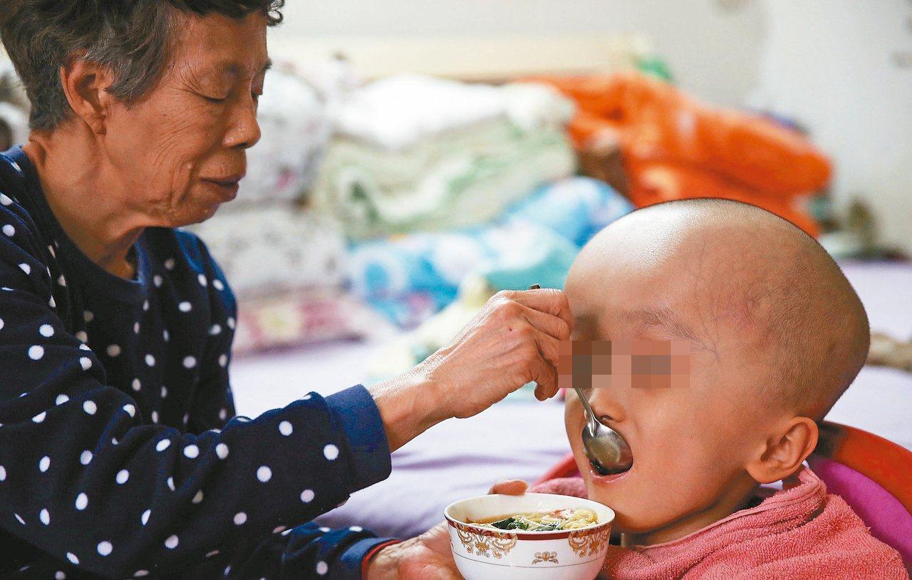 樂樂在兩個月大時不幸患病,從此老夫妻踏上漫漫求醫路。記者朱婉瑜/攝影