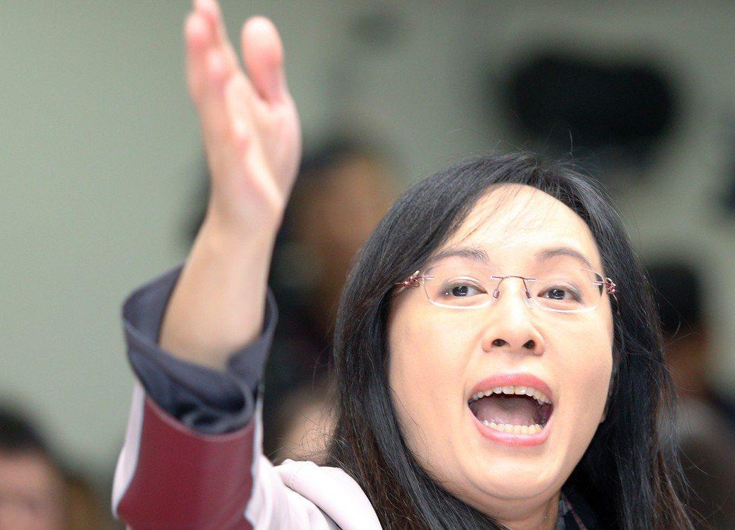 民進黨立委陳瑩。 圖/報系資料照片