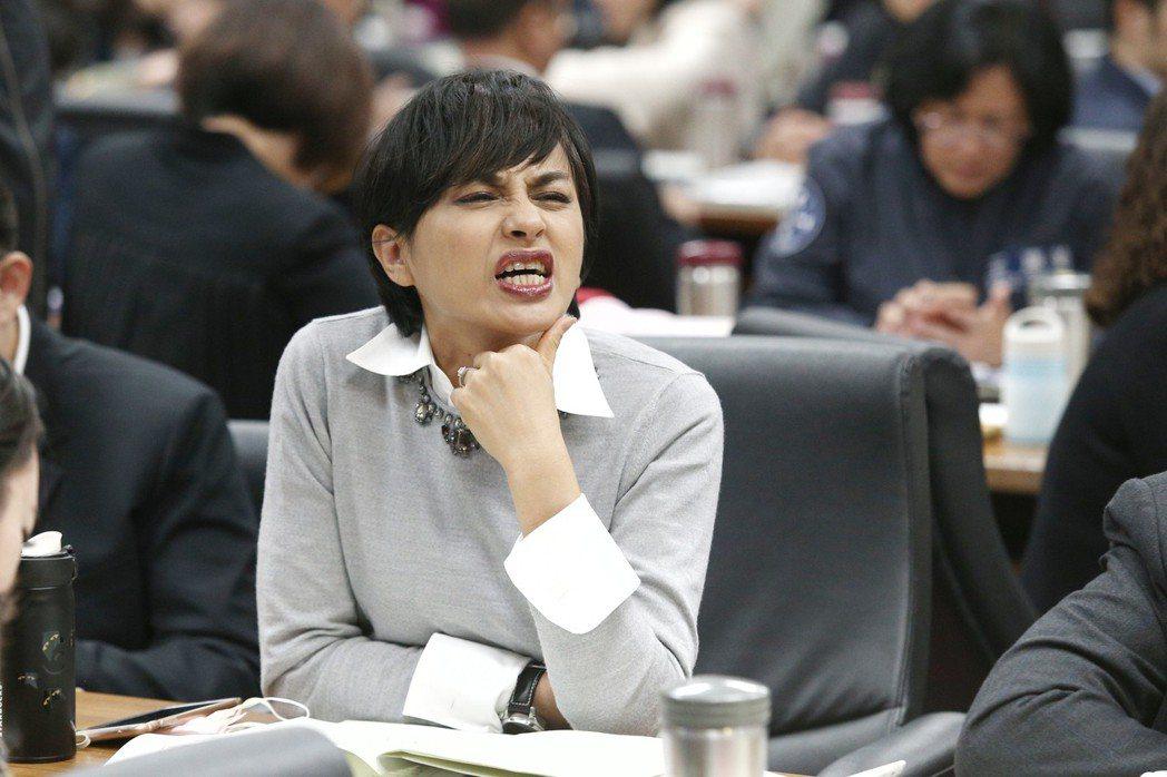 立法院審查勞基法修正草案,民進黨立委邱議瑩稱外面抗議勞工「都是放錄音帶的」。 圖...