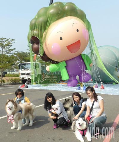 高雄大氣球遊行周末(16日)登場,以高雄市長陳菊「Q版花媽」為造型的大氣球,今年...