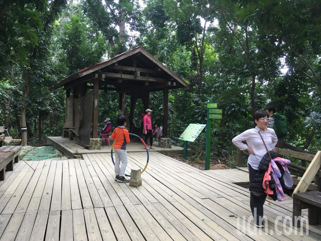 中興大學新化林場是台南市民後山森林。記者吳淑玲/攝影