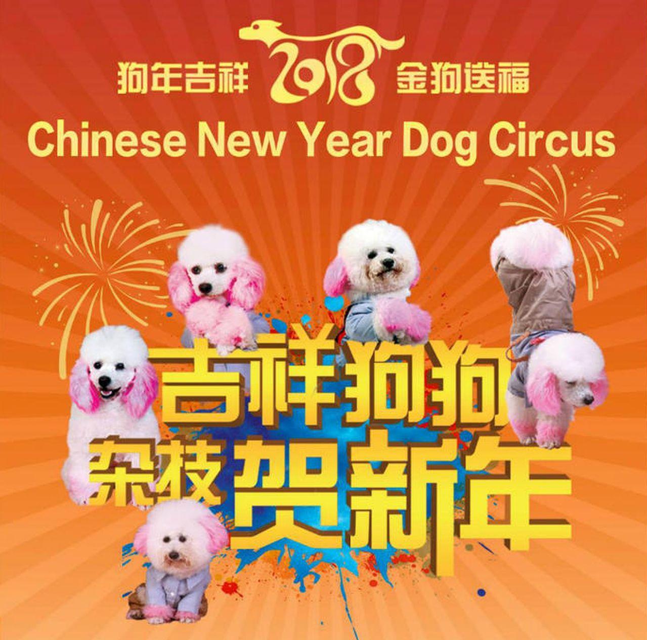 新加坡民眾網上請願,中國「狗戲團」表演被砍