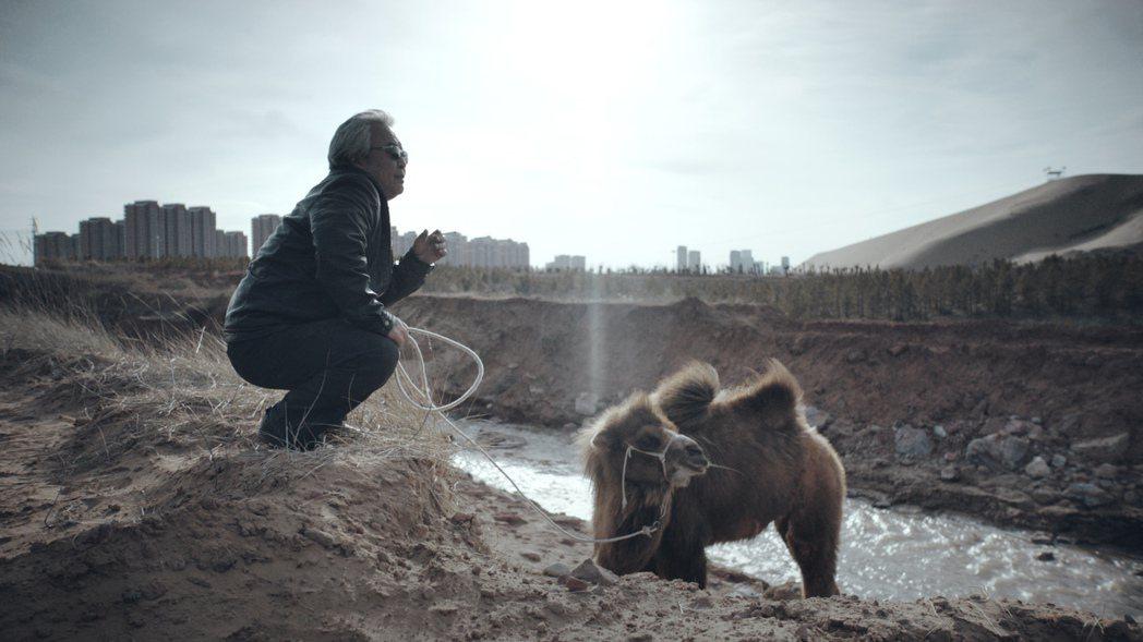 「老獸」是本屆金馬獎黑馬,獲得最佳男主角、原著劇本、國際影評人費比西獎三項肯定。