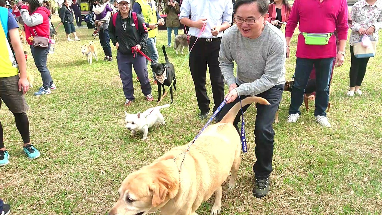 立委劉櫂豪(前)帶著黃金獵犬與數十位飼主帶著家中毛小孩一起參與鯉魚山健走。記者羅...