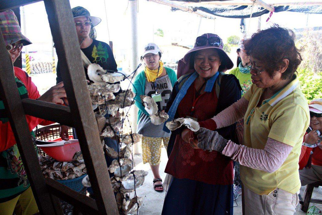 北門社大與社區共同發展出在地小旅行,認識漁村牡蠣產業的養殖,接觸在地知識與環境變...