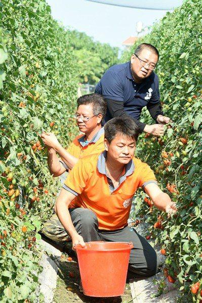 48歲的蕭成龍(中)從軍23年,不忍雙親年邁還在下田,3年前毅然自軍中退役接手家...