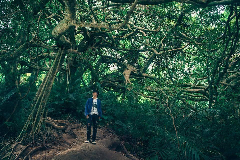 王宏恩一直希望能舉辦「部落森林音樂會」。圖/擷自王宏恩臉書