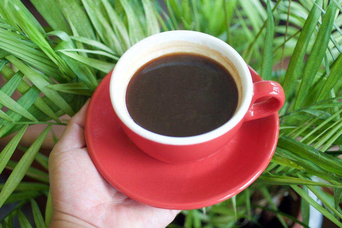 馬告咖啡,外觀與一般咖啡無異,入口充滿檸檬胡椒香韻。
