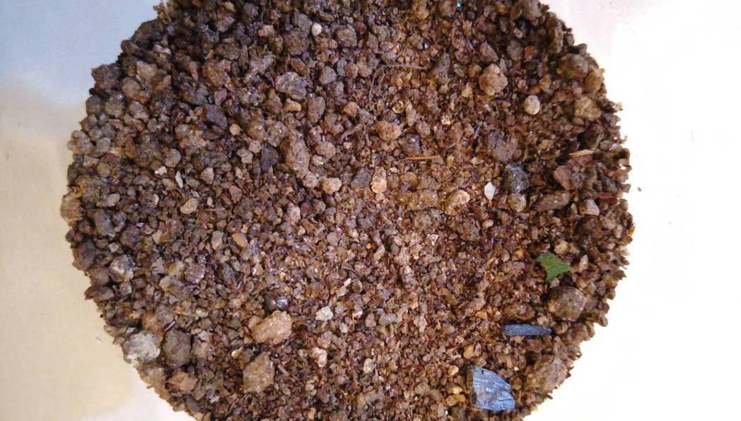 中藥材的夜明砂就是蝙蝠大便。圖/蝙蝙館提供