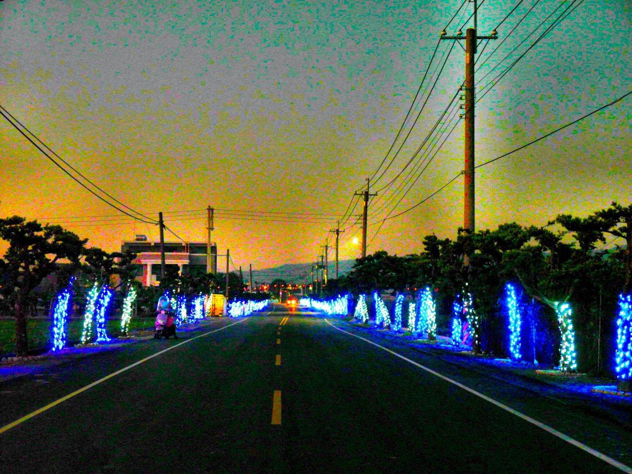 國內僅有的羅漢松光廊展現不凡的光雕夜景,增加耶誕浪漫氣。記者蔡維斌/翻攝