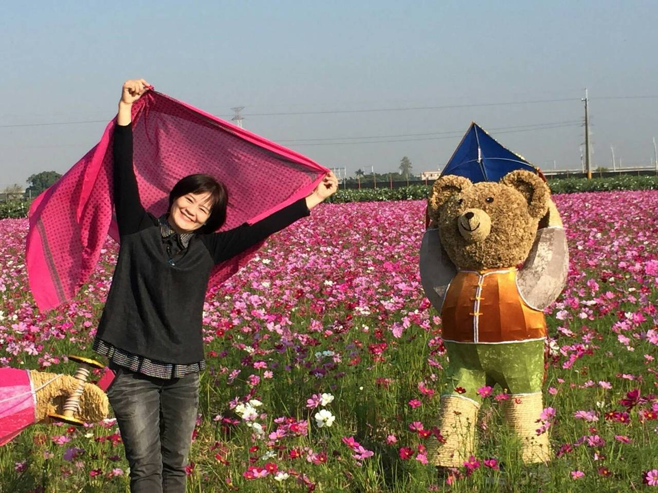 田中鎮稻草人藝術節明天登場,不過一大片美麗的波斯菊花海,和可愛的熊熊稻草人吸引許...