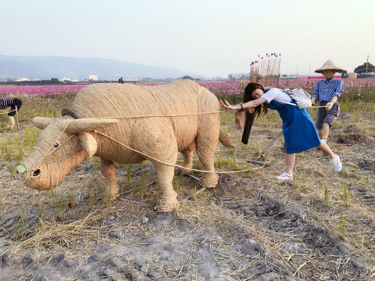 田中鎮稻草人藝術節登場,不過一大片美麗的波斯菊花海,和可愛的熊熊稻草人吸引許多民...