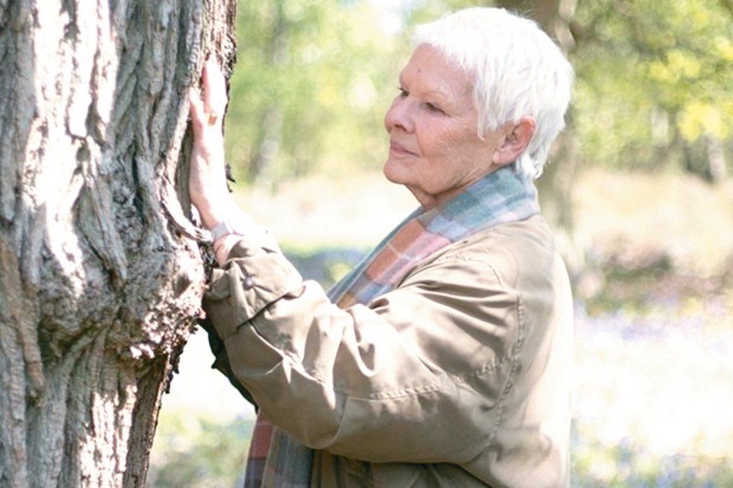英國老牌影后茱蒂丹契愛樹成癡。 圖/BBC節目宣傳照片