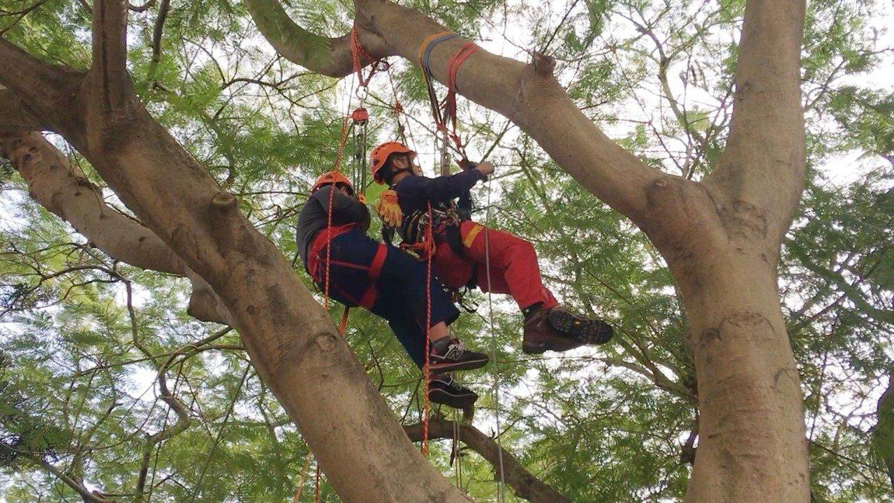 小朋友體驗特搜隊的繩索升降。圖/消防提供