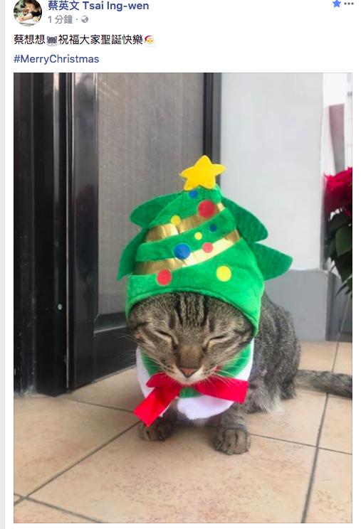 蔡英文總統飼養的貓咪「蔡想想」,今晚祝福大家聖誕快樂。取自蔡英文總統臉書。