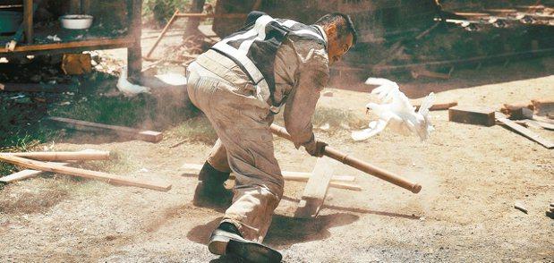 鴿子再次出現在吳宇森新作「追捕」中。 圖/陳立凱攝影、華映提供