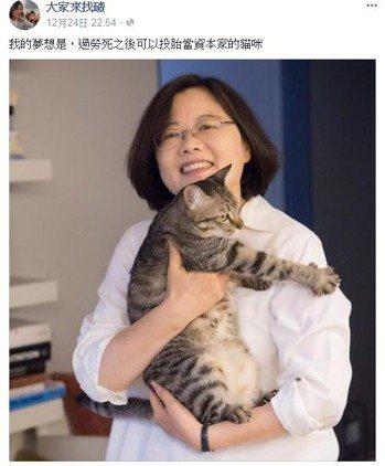 有網友貼出蔡總統與愛貓蔡想想的照片,酸「過勞死後能投胎當資本家的貓咪」。圖擷自死...