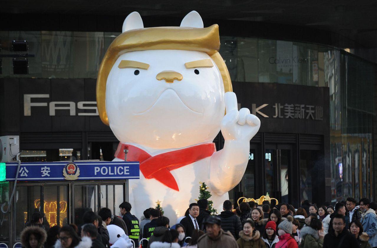 中國太原近日出現了一頭「川普狗」,引起外媒報導。圖擷自美國新聞週刊