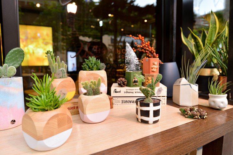 多肉植物搭配的各式盆器皆是台灣設計師的作品。圖/有肉Succulent & Gi...