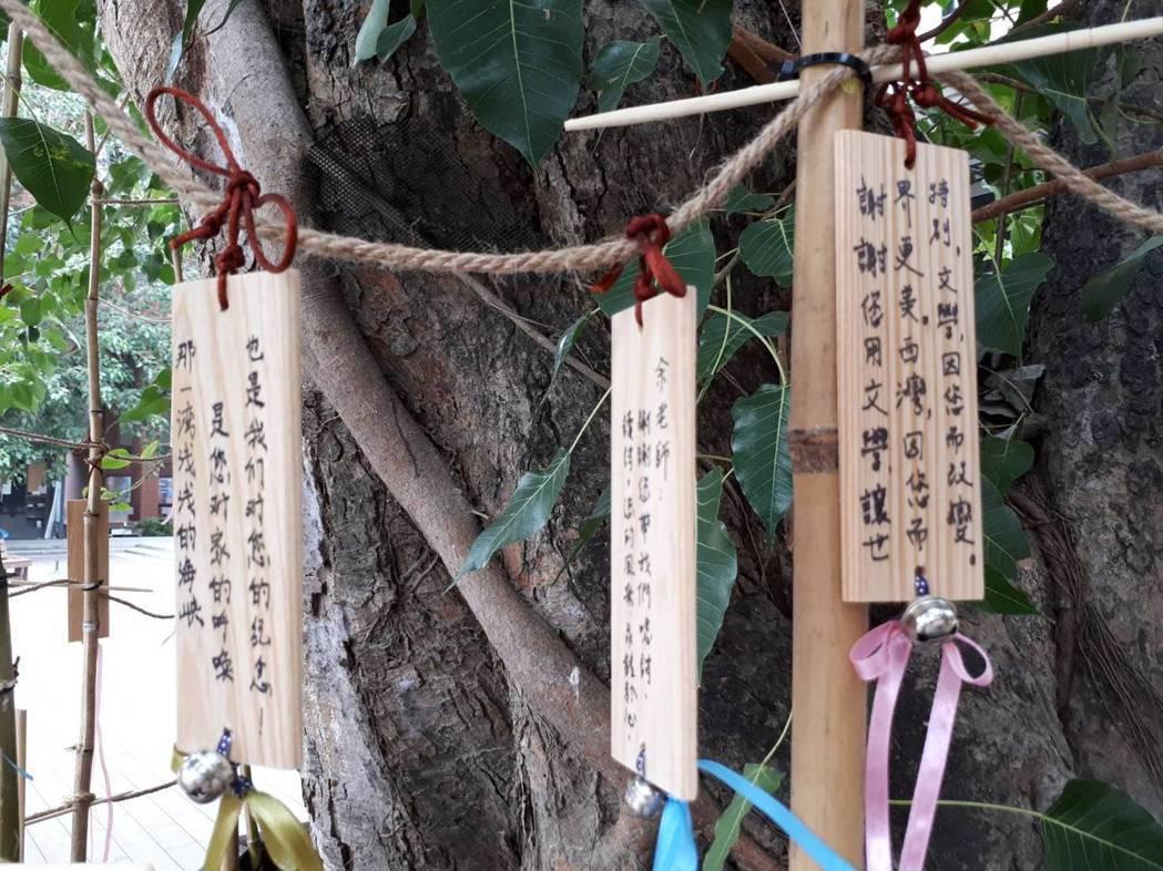 中山大學的菩提樹繫滿了對余光中的思念,詩人曾歇息於樹下長椅。 圖/中山大學提供
