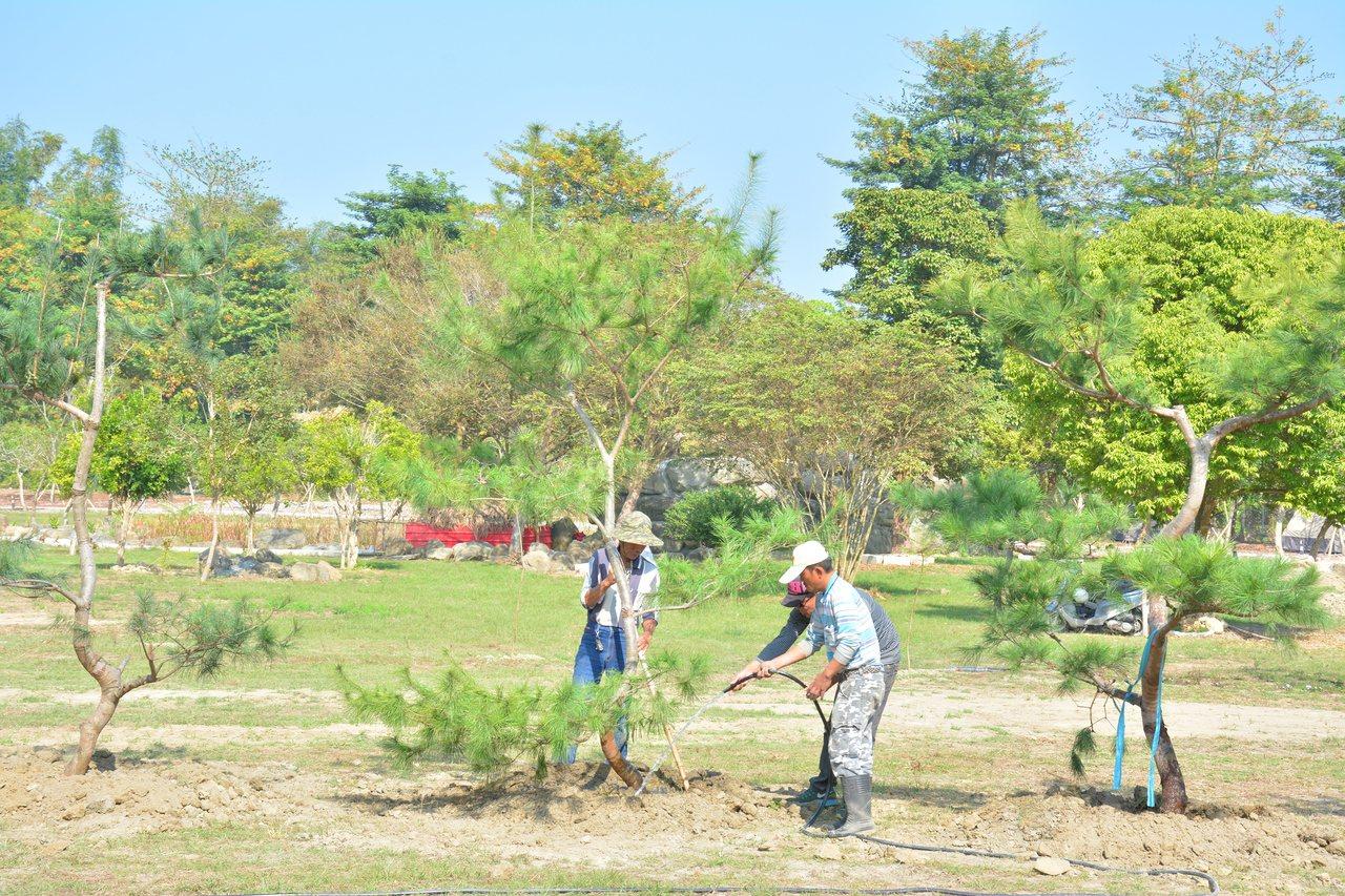 皇尚文創在台南左鎮投入近10億元打造生態露營區,規劃種植珍貴樹木,看中未來的觀光...