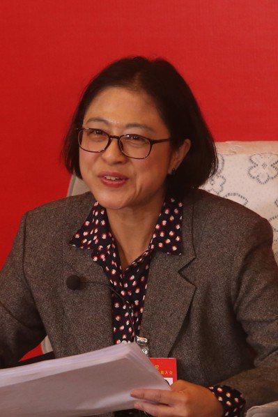 大陸全國台聯副會長盧麗安。聯合報資料照