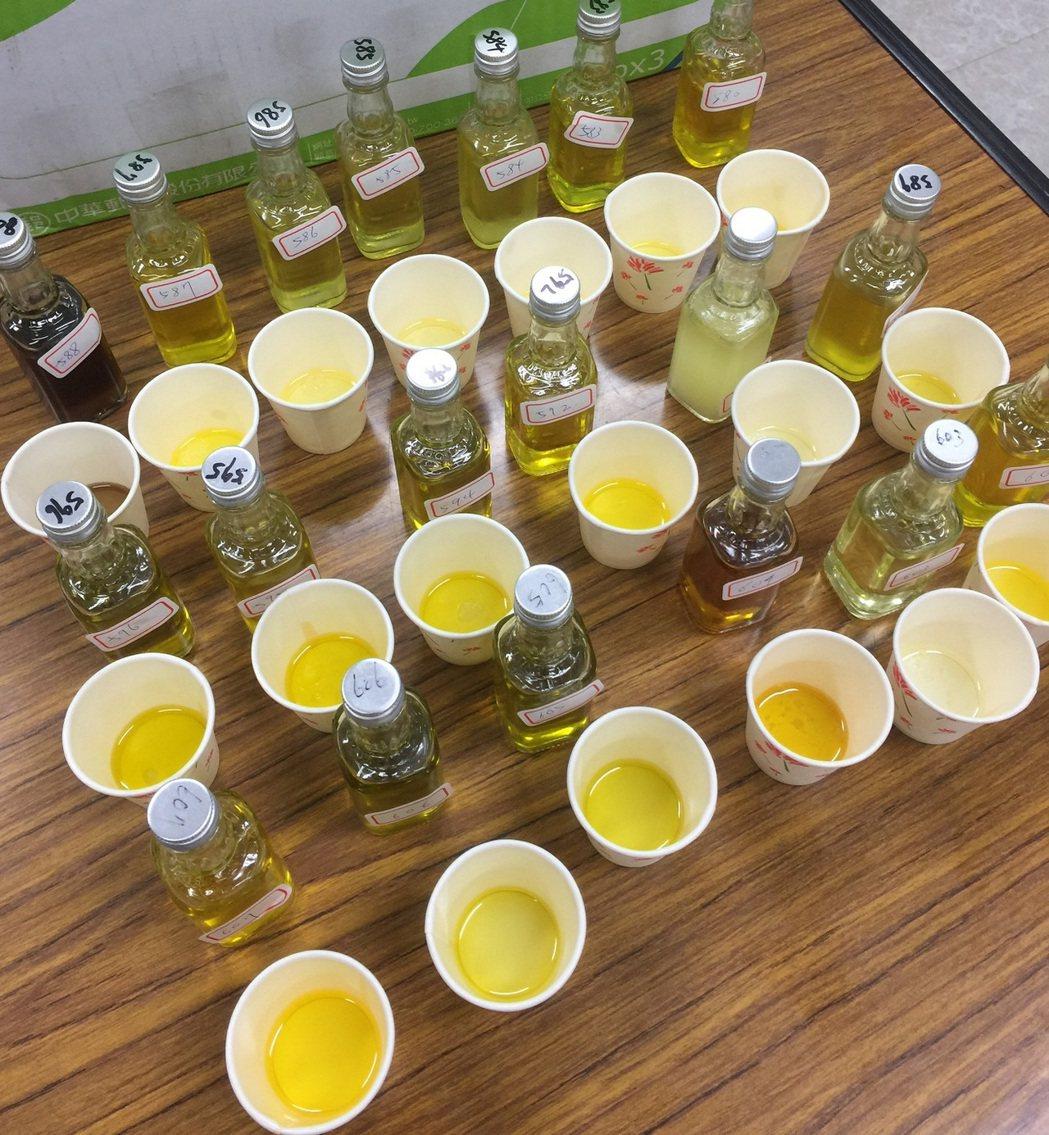 農委會茶改場參考歐洲橄欖油評鑑分級方式,建立屬於台灣茶油的感官品評系統方法,可作...