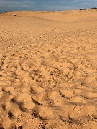 站在紅沙丘上,宛如駐足北非沙哈拉大沙漠。 記者黃日暉/攝影