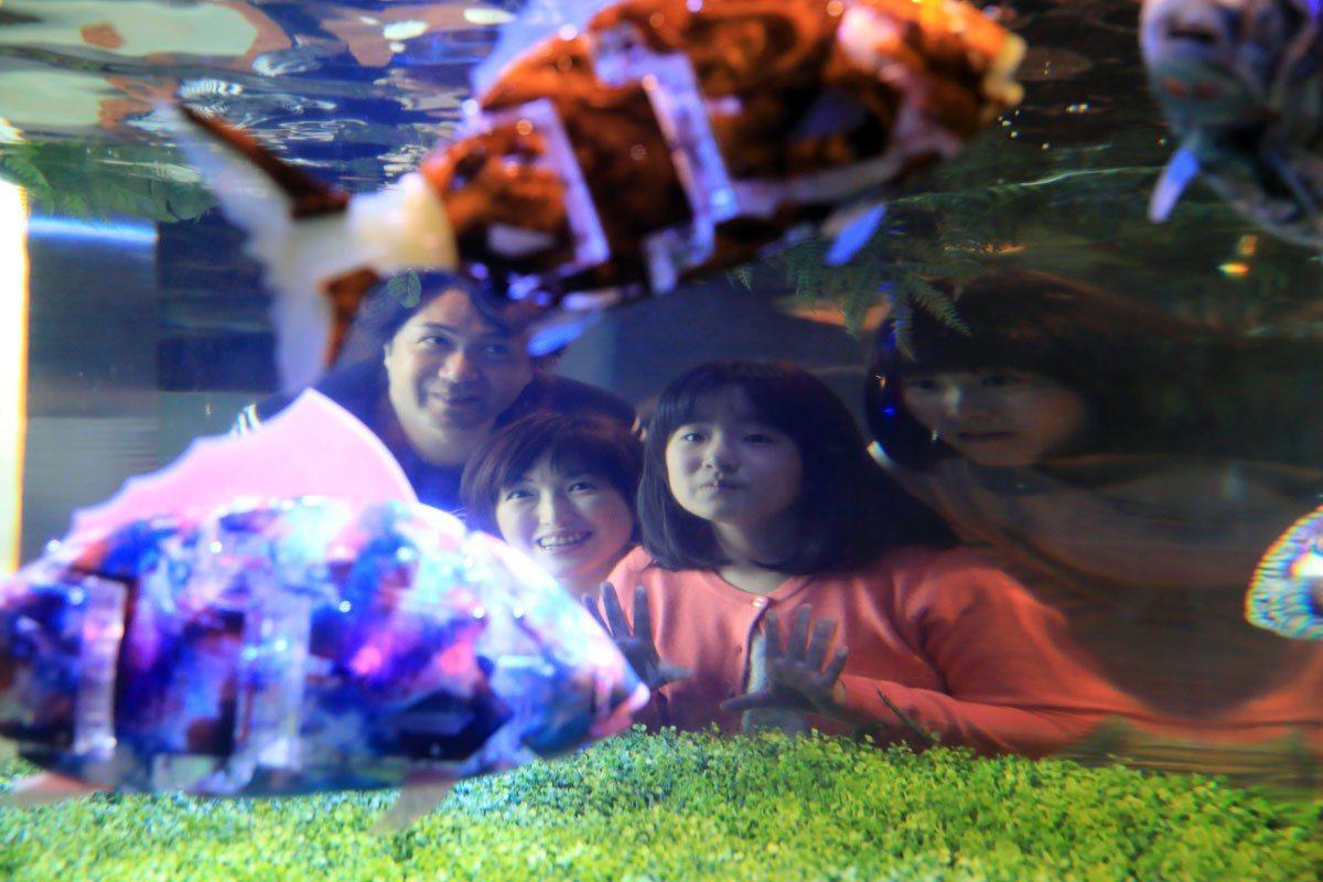舞濱東京灣店裡的一角,連水族箱裡都是機器魚。