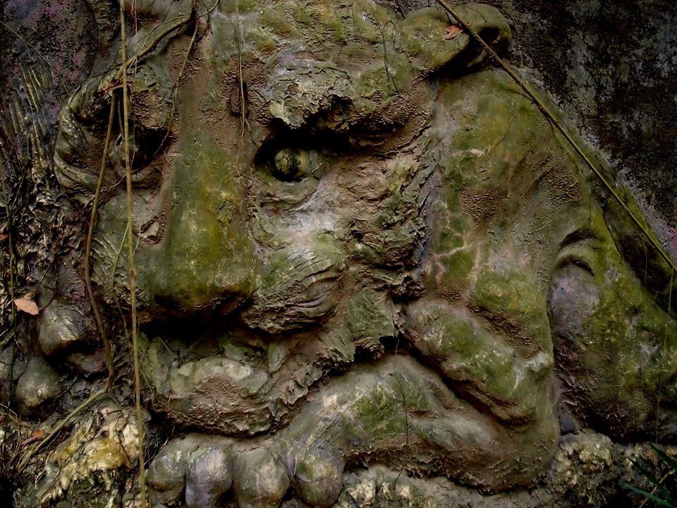 南投縣草屯鎮雙冬花園荒廢已久,枯藤和青苔爬上雄獅浮雕,獅眼遭苔占據如閃著綠光。圖...