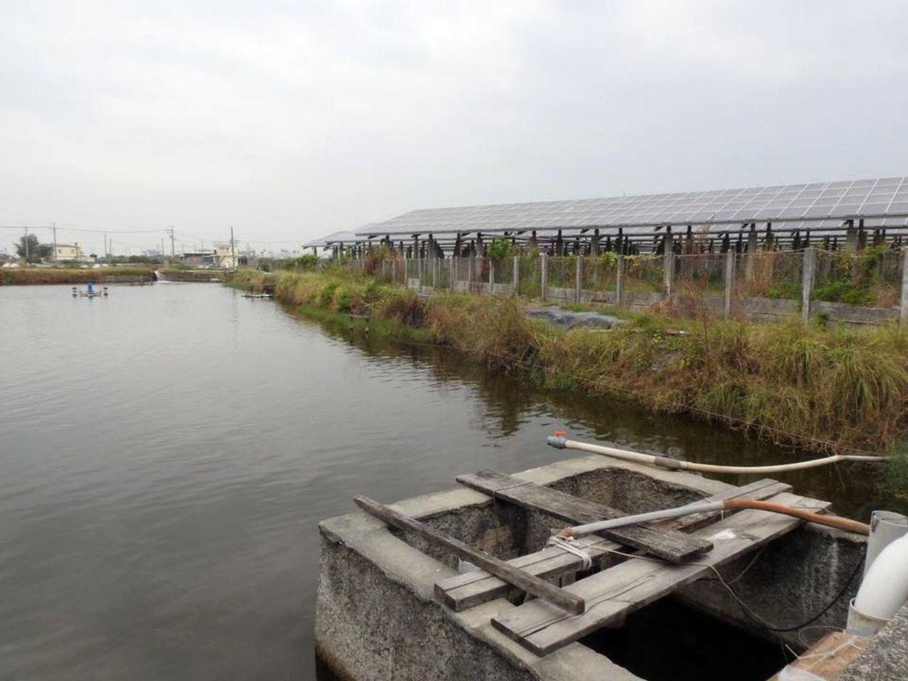 政府推行綠能政策,屏東林邊地區已「長」出許多光電板。 圖/林昆海提供
