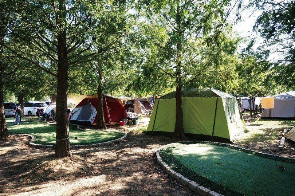樹林中的肯芙森林露營區。(圖片來源/《劉太太和你露營趣》)