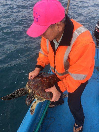 上個月有位漁民行經潮境保育區附近,看見一隻海龜被困在廢棄漁網,好心幫海龜脫困。 ...