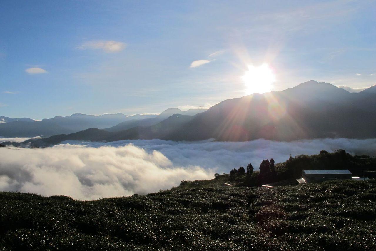 ▲南投曲冰、武界部落秘境雲瀑。(圖/Tripbaa趣吧!達人帶路)