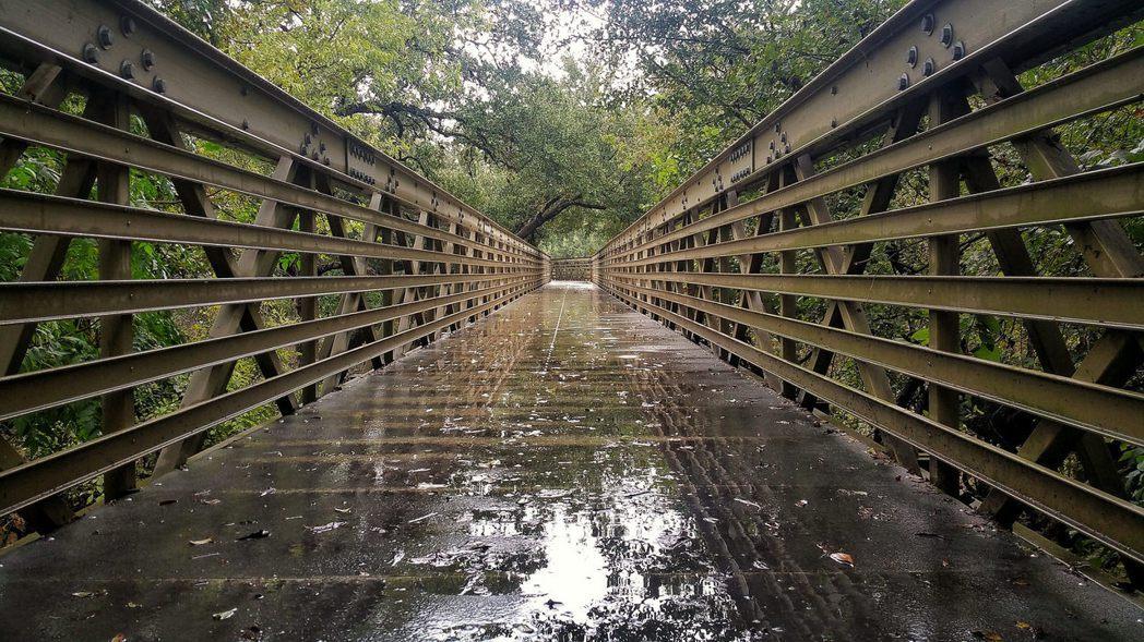 ▲雨季登山健行。(圖/攝影者:Joe Diaz, Flickr CC Licen...