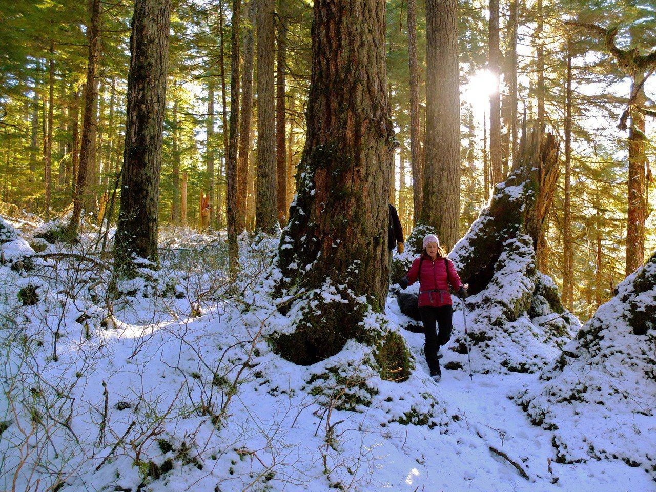 ▲冬天登山穿著。(圖/攝影者:Joseph, Flickr CC License...