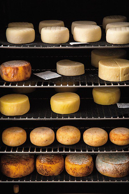 Dida Creamery的乳酪熟成櫃。