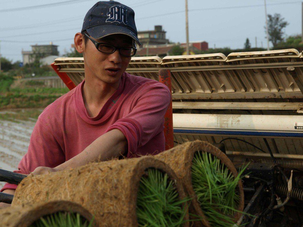 新豐小農吳建良發起「不整地栽培」小革命。圖/吳建良提供