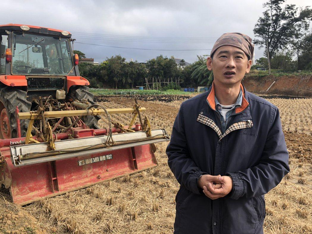 新豐小農吳建良發起「不整地栽培」小革命。記者侯俐安/攝影