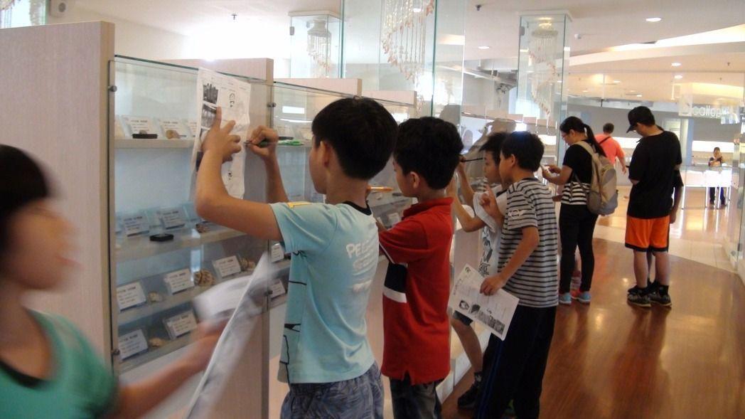 旗津貝殼博物館吸引不少學生或親子前去參觀。圖/本報資料照