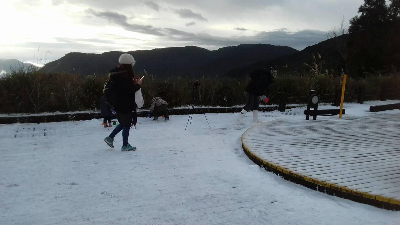 太平山今晨降下今冬首場瑞雪。圖/太平山莊提供