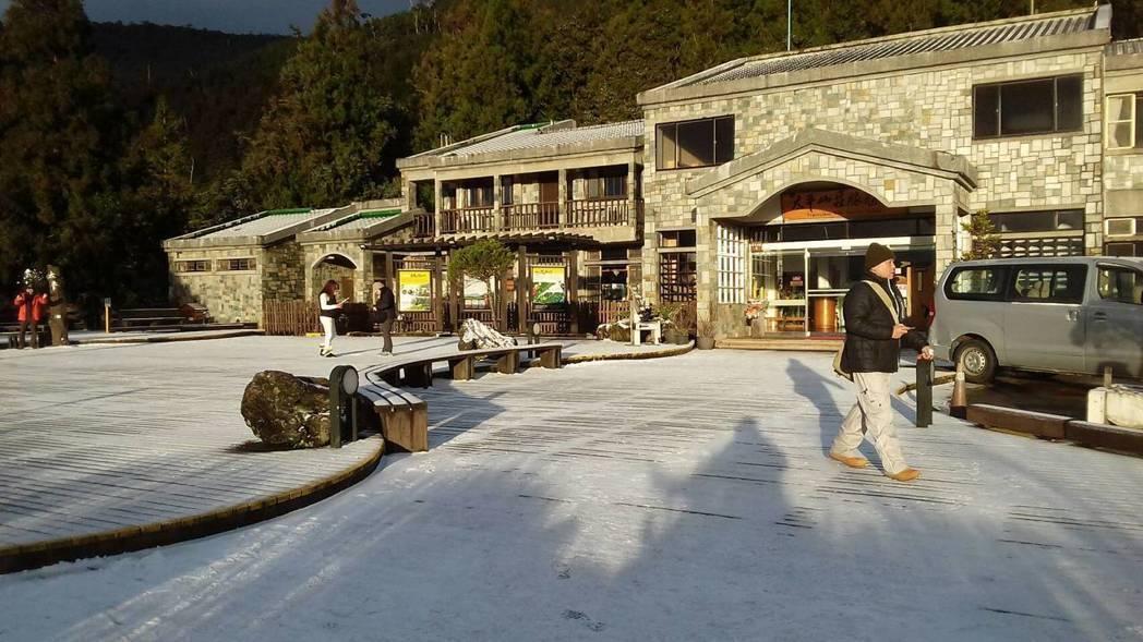 太平山10日清晨降下今冬首場瑞雪。 圖/太平山莊提供
