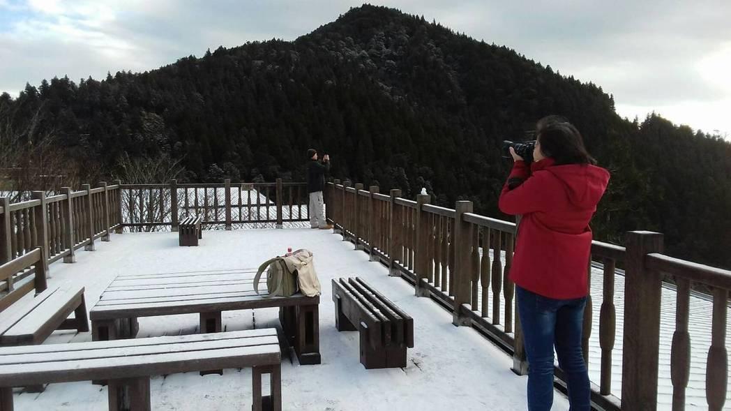 太平山10日降下2018年首場瑞雪,讓上山追雪的民眾成功一睹雪國風采。 圖/太平...