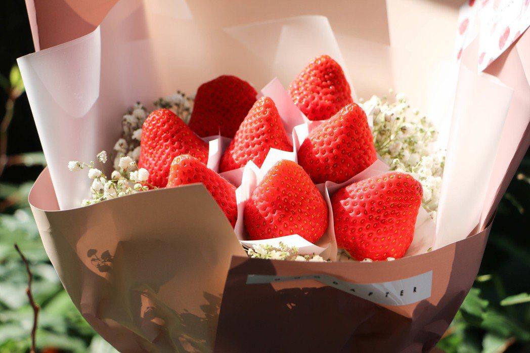 每顆草莓香氣十足,讓人看了垂涎欲滴。記者謝欣倫/攝影