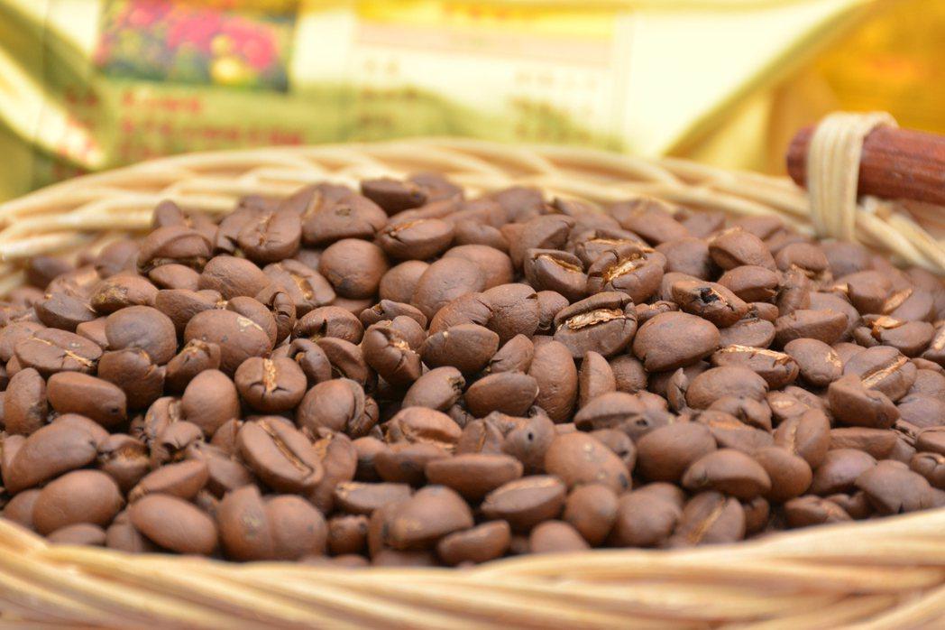 梅嶺咖啡品質相當好。記者吳淑玲/攝影