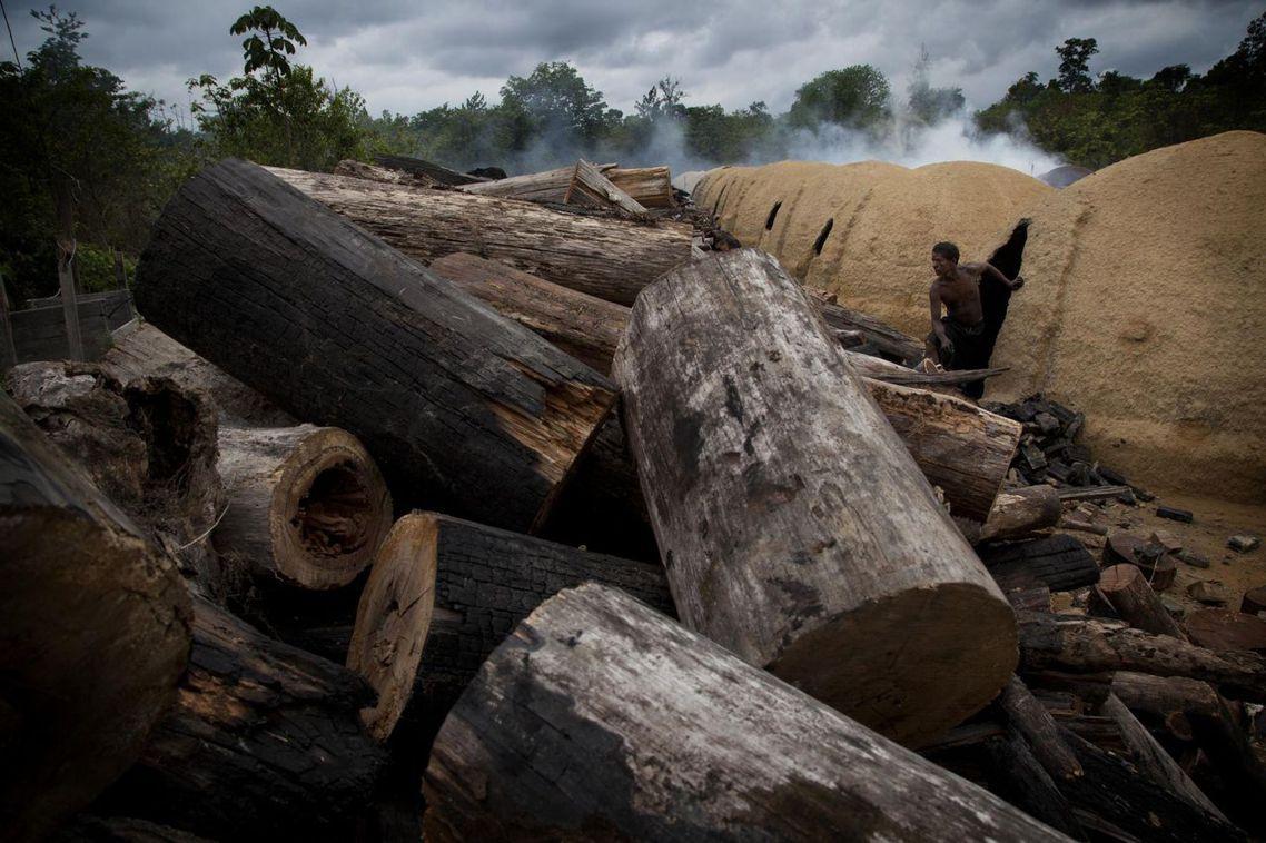 圖為2011年經綠色和平組織紕漏,巴西亞馬遜河流域的非法伐木營區。 圖/路透社