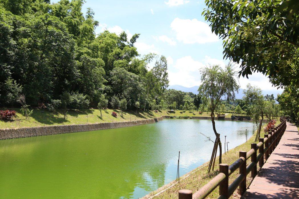南華大學橄欖湖。圖/南華大學提供